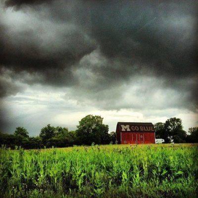 Cornfield and barn house