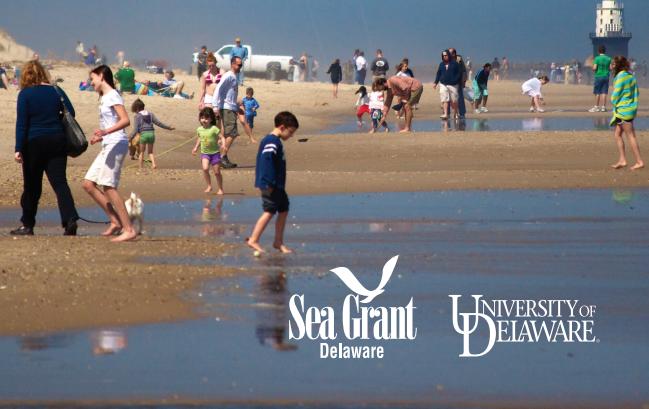 Sea Grant Delaware