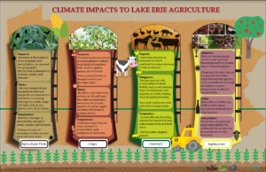 infographic Climate Impacts to Agriculture